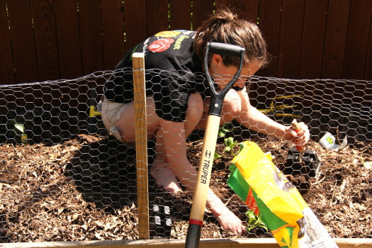 Jess Planting