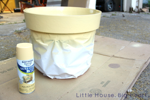 Rust Oleum Spray Painted Terra Cotta Pots