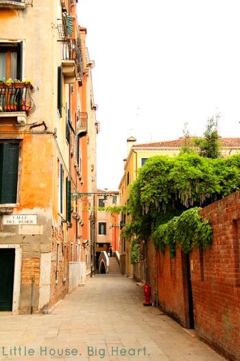 Venice Canal Walk 4